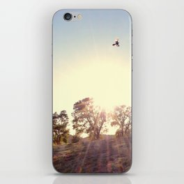 A Hawks View iPhone Skin