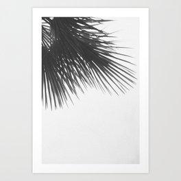 Tropical Dreams Art Print