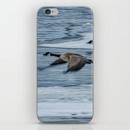 Canada Geese Flying X iPhone Skin