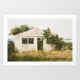 My Dream Home. Art Print
