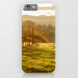 Grape vines heading downhill in bright afternoon sunlight iPhone Case