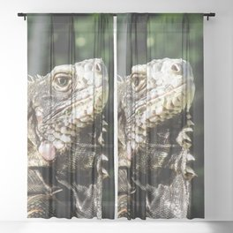Watercolor Reptile Green Iguana Lizard 02, Is This My Good Side? Sheer Curtain