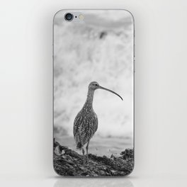 The Curlew iPhone Skin