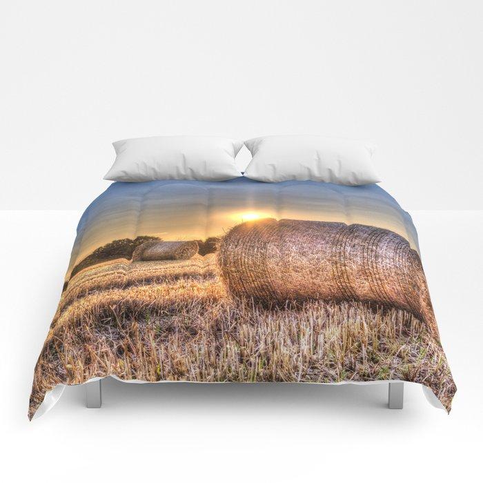 Summer Evening Farm Comforters
