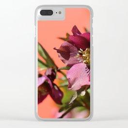 Lenten Rose and Calder Clear iPhone Case