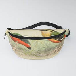 Green breasted Pitta pitta longipennis8 Fanny Pack