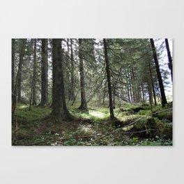 Mitt stille land Canvas Print