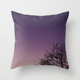 A bare tree in the sunset. Throw Pillow