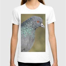The great Indian pigeon T-shirt