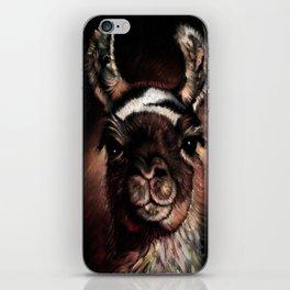 llama Cusco Peru iPhone Skin
