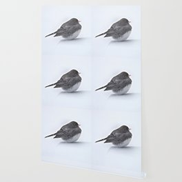 Brave Bird in a Blizzard Wallpaper