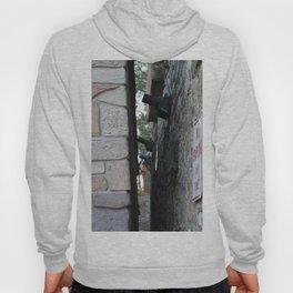 Alley Hoody