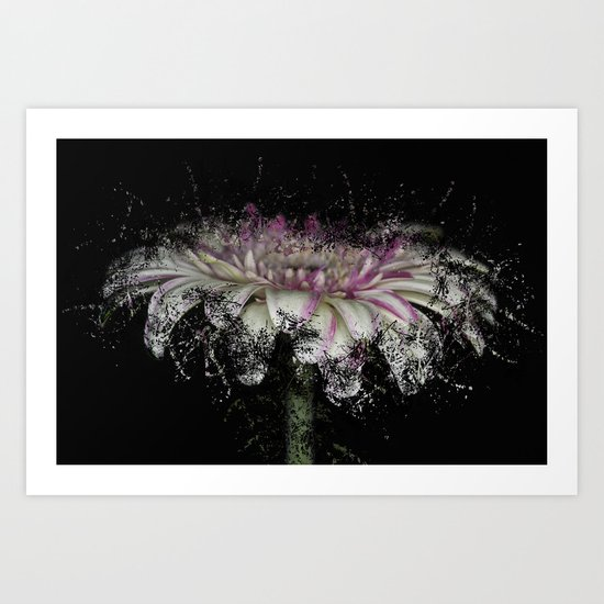 Fractured Gerbera Art Print