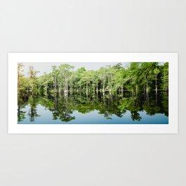 Florida Beauty 8 Art Print