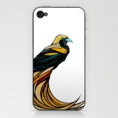 Create iPhone & iPod Skin