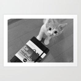 Cat Newspaper Art Print
