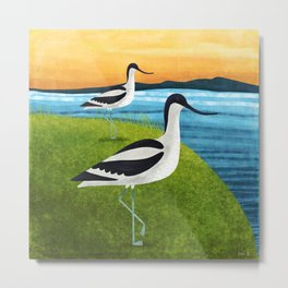 Two Avocets In Suffolk Metal Print