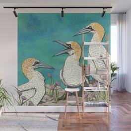 Gannets Wall Mural