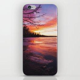 Intense Palette iPhone Skin