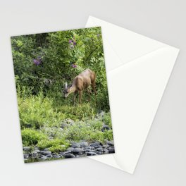 Young Doe Among the Flora, No. 2 Stationery Cards