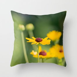 Portrait of a Wildflower in Summer Bloom Throw Pillow