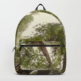 Into the Mist - Nature Photography Backpack