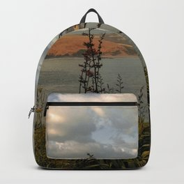 new zealand rough lands island and ocean view Backpack