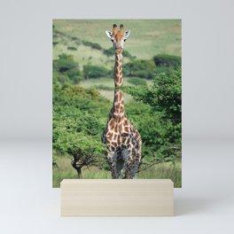 Giraffe Standing tall Mini Art Print