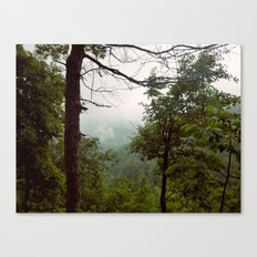 Smoky Mountains Tennessee Tree Color Photograph Canvas Print