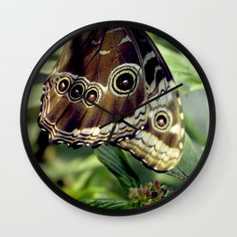 Butterfly Hang Wall Clock