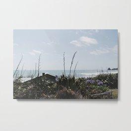 West Coast, South Island, NZ Metal Print