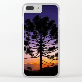 Araucaria under Orion Clear iPhone Case