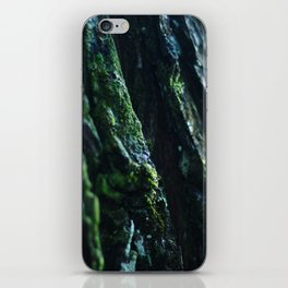 In The Damp of The Forest iPhone Skin