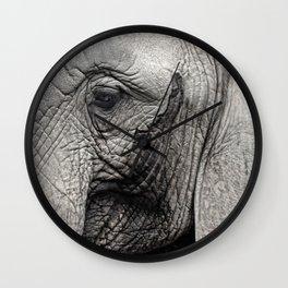 pachyderm Wall Clock