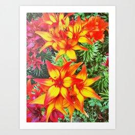 Flower Power Lily Art Print