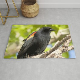 Watercolor Bird, Red-Winged Blackbird 03, Longmont, Colorado, Riparian Elegance Rug