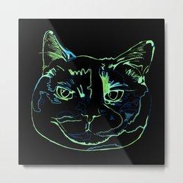 Torti Cat Metal Print