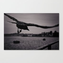 Dark Point Canvas Print
