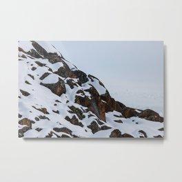 _MG_5890 Metal Print