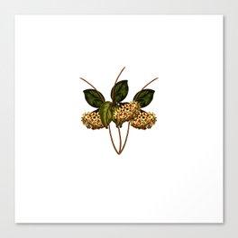 Magical flora #4 Canvas Print