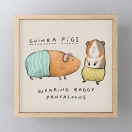 Guinea Pigs Wearing Baggy Pantaloons Framed Mini Art Print