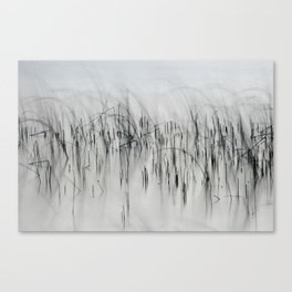 Evening Music - Calm and Peaceful Grasses Canvas Print