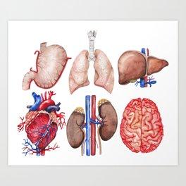 Watercolor organs Art Print