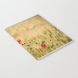 Dream poppies. Spring fields. Early morning Notebook