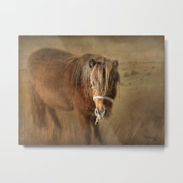 Wanna Be Friends? Metal Print