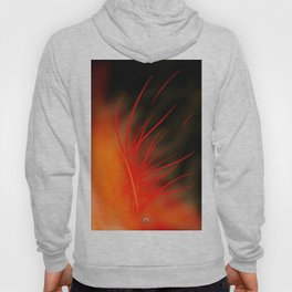 First Time Posting! Fireflower II Hoody