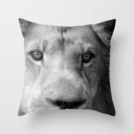 12-9-15-14 Throw Pillow