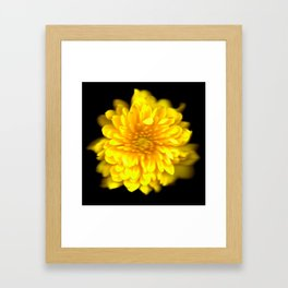 Flower 3 Framed Art Print