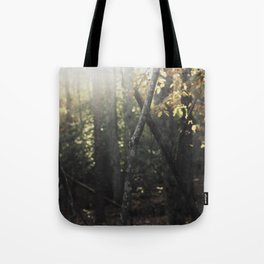 Forest 001 Tote Bag