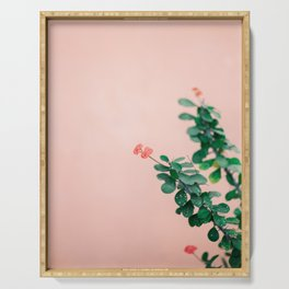 Floral photography print | Green on coral | Botanical photo art Serving Tray